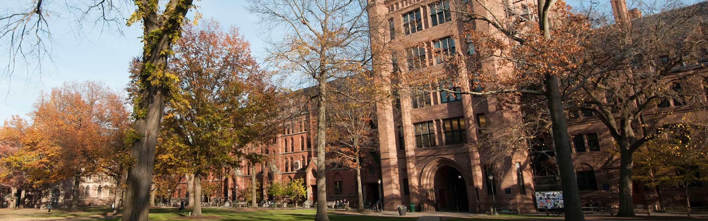Yale-University-Banner-2400-x-750